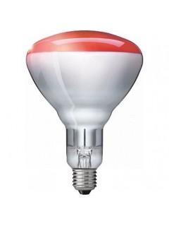 Philips IL 10 náhradní žárovka 100W